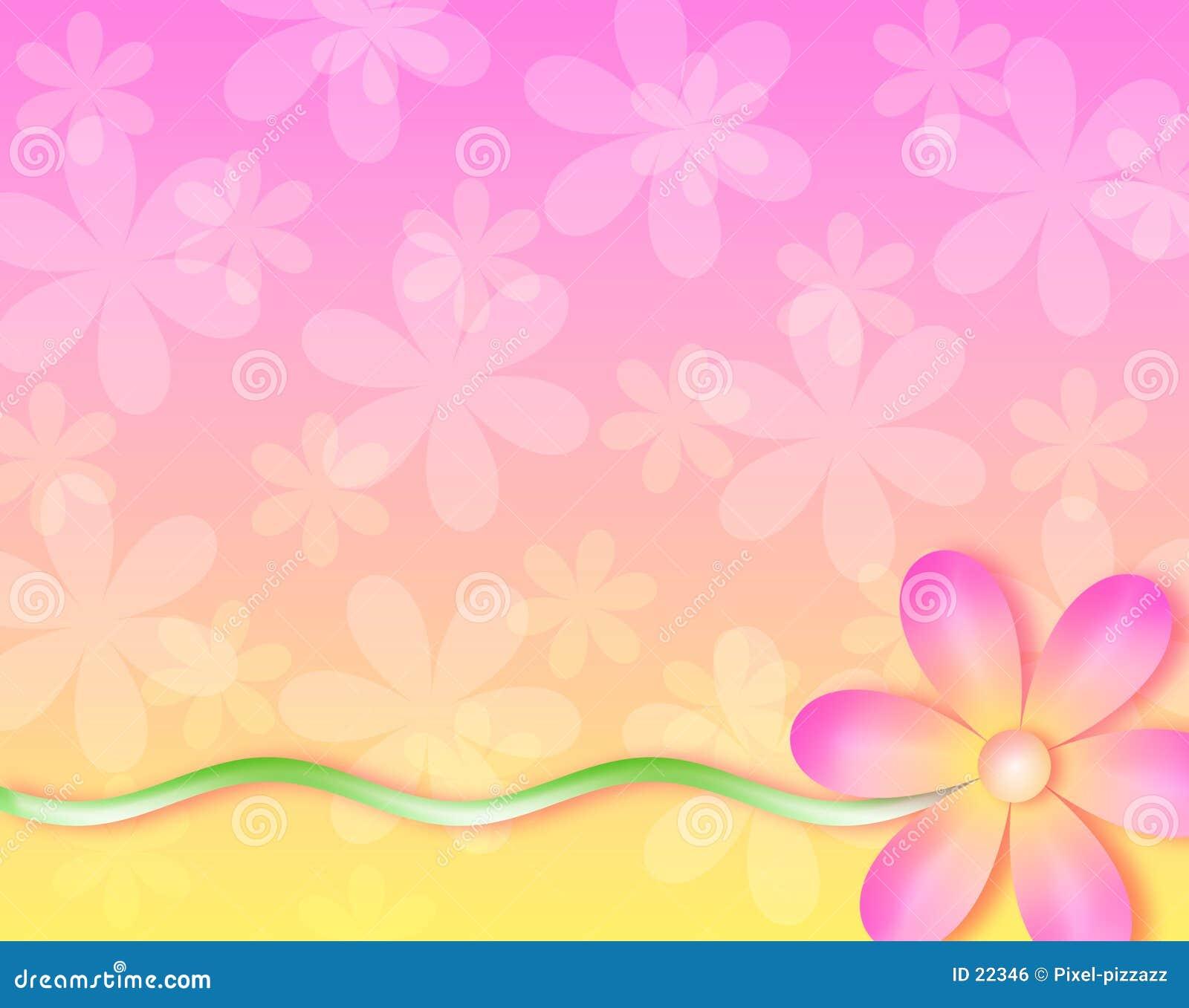Fundo - nenhuma flor de parede
