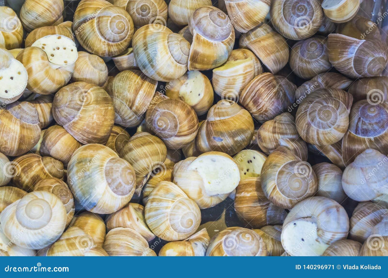 Fundo ou textura Os caracóis enchidos Alimento francês produtos delicacy Um prato para gourmet mercado