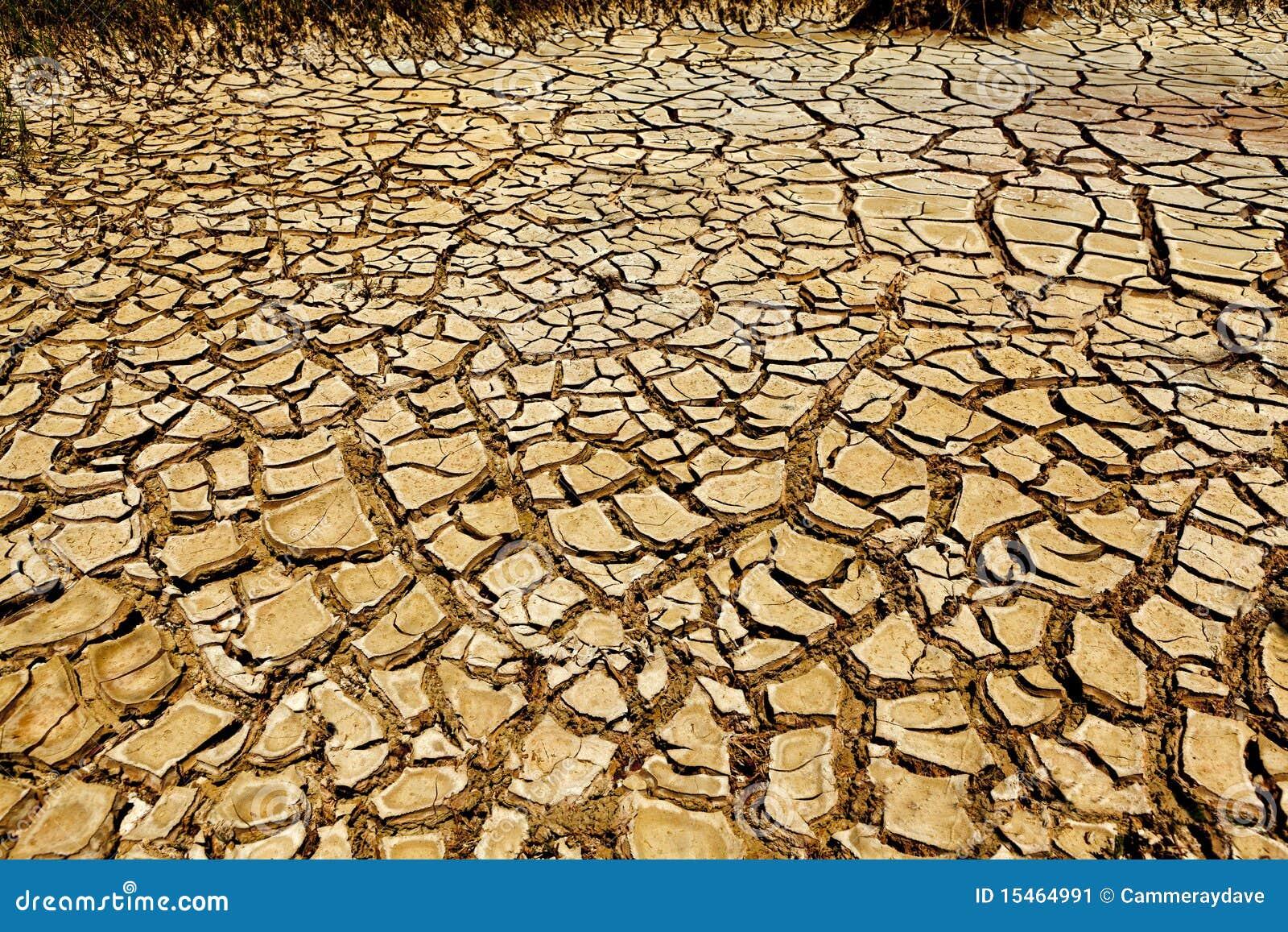 Fundo rachado da terra