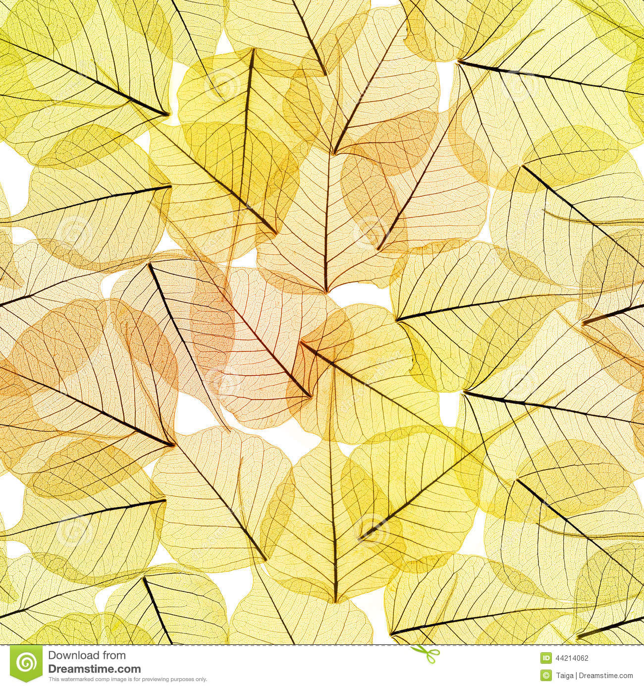 Fundo sem emenda - Autumn Leaves Pattern