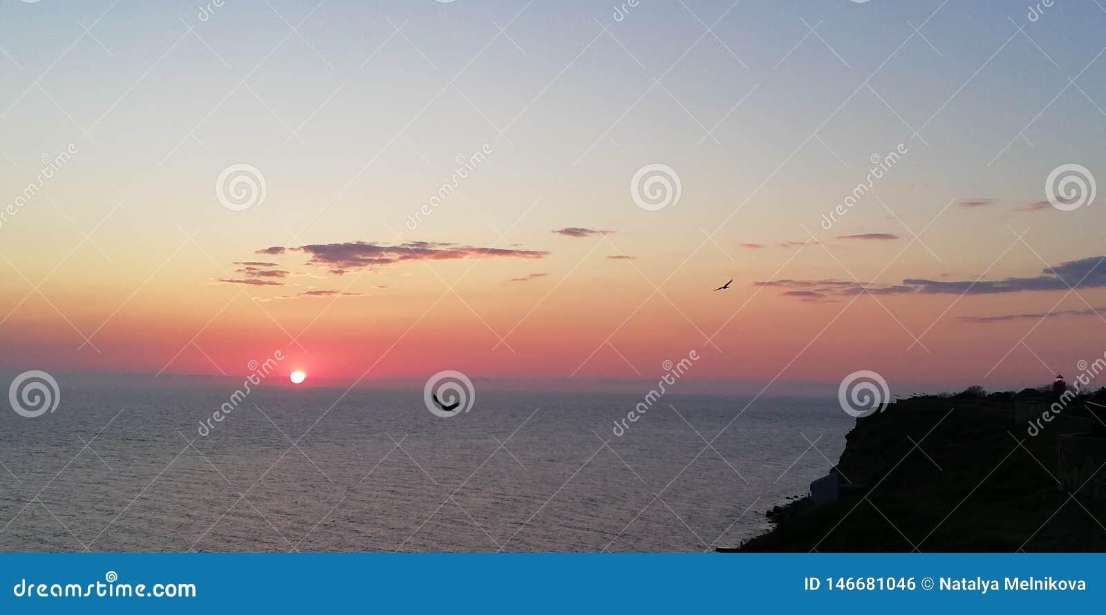 Fundo Silhuetas de pássaros de voo no fundo da paisagem do mar do por do sol