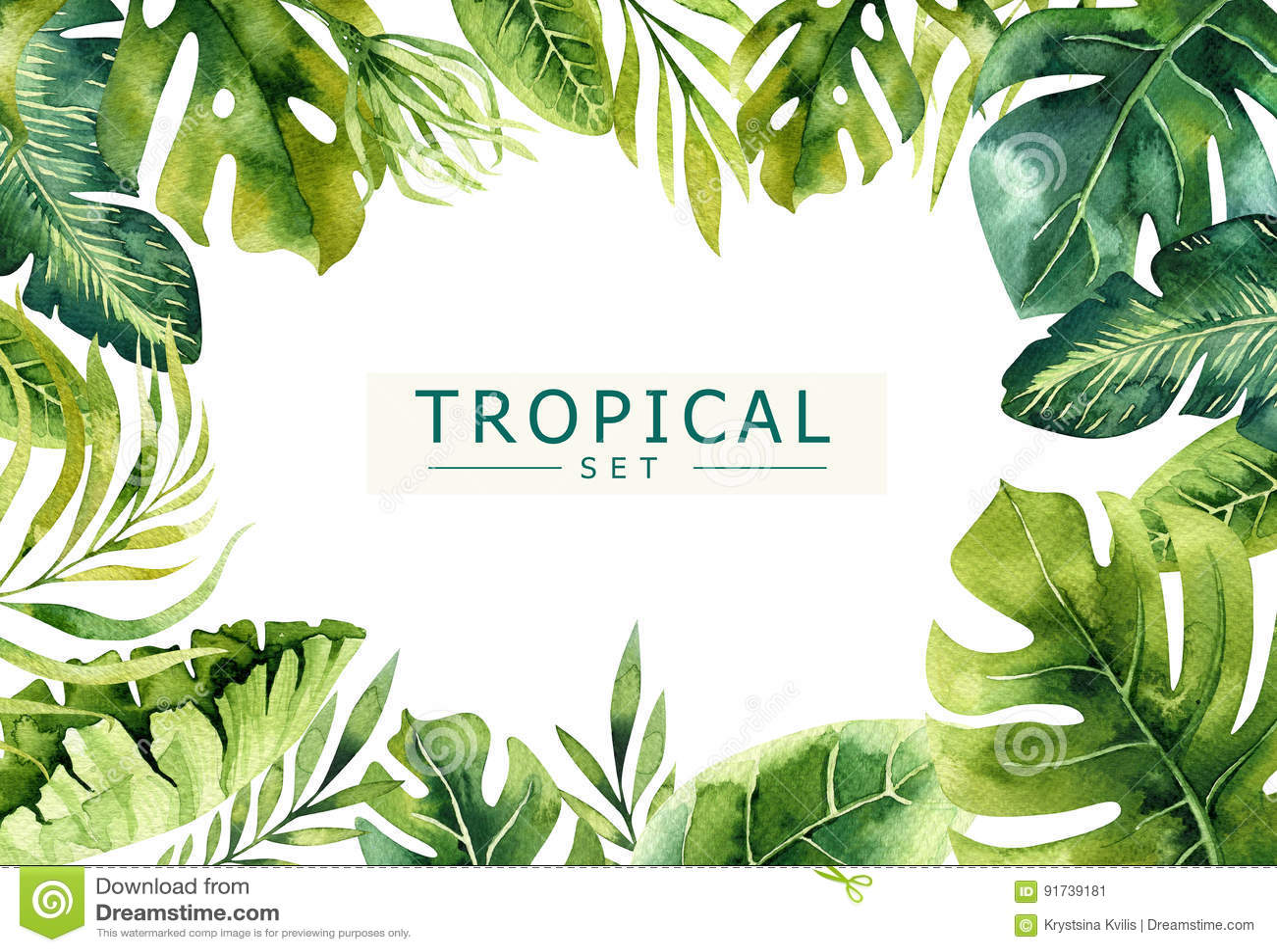 Fundo tirado mão das plantas tropicais da aquarela Folhas de palmeira exóticas, árvore da selva, elementos borany tropicos de Bra