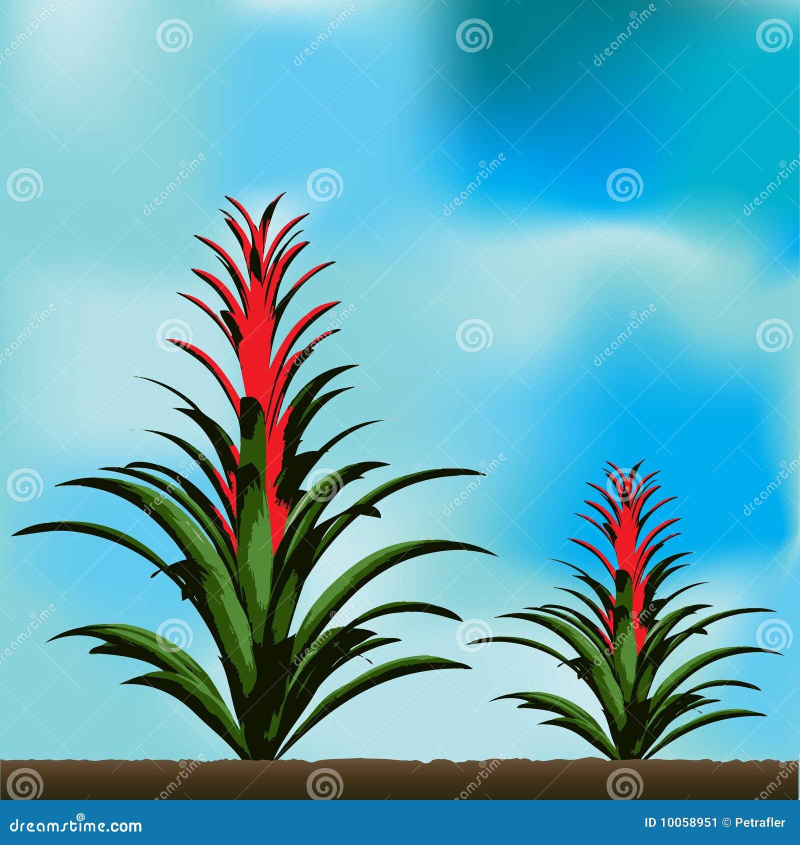 Fundo tropical da flor