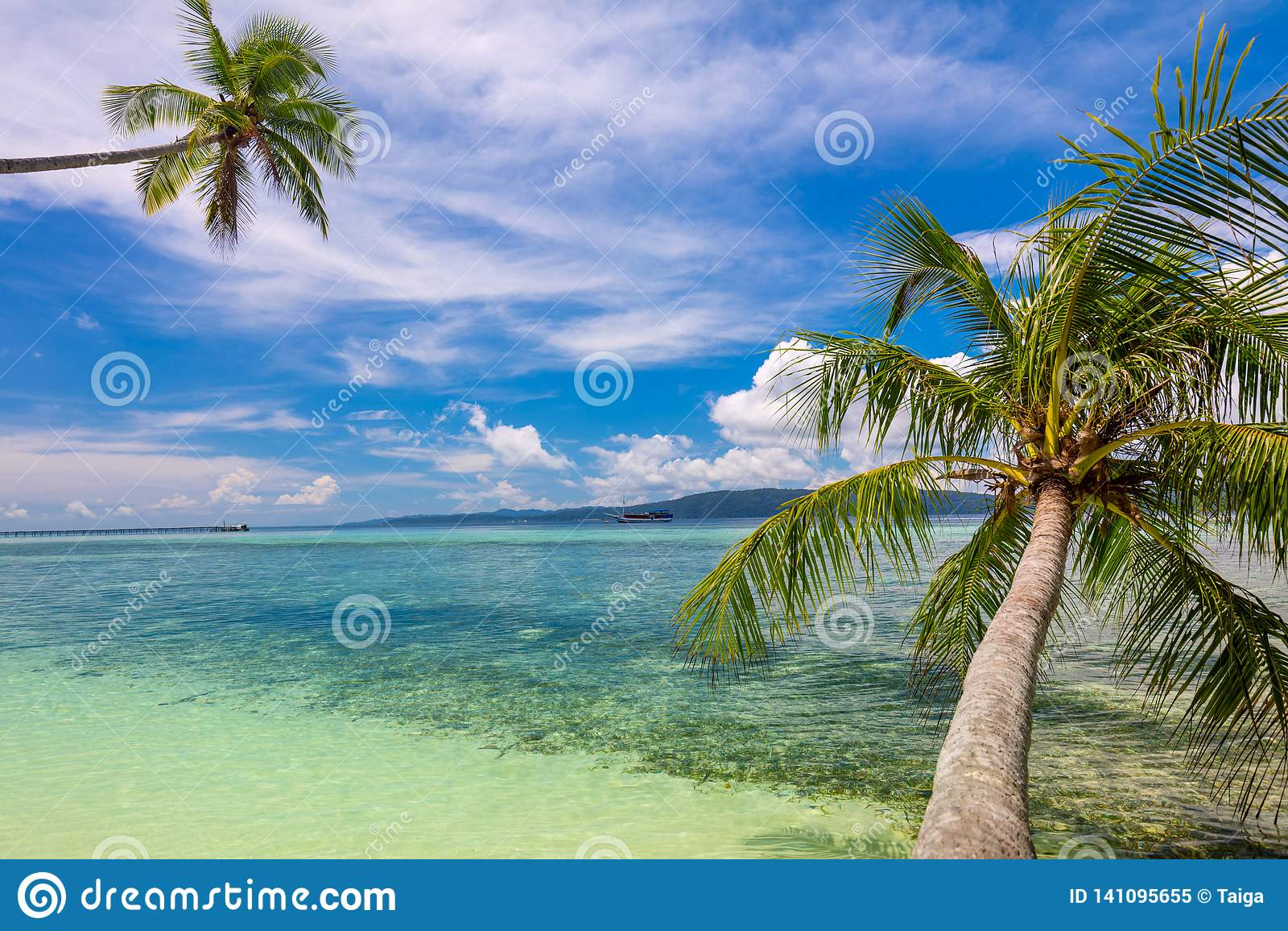 Fundo tropical da praia - ressaca do mar calmo, palmeiras e céu azul