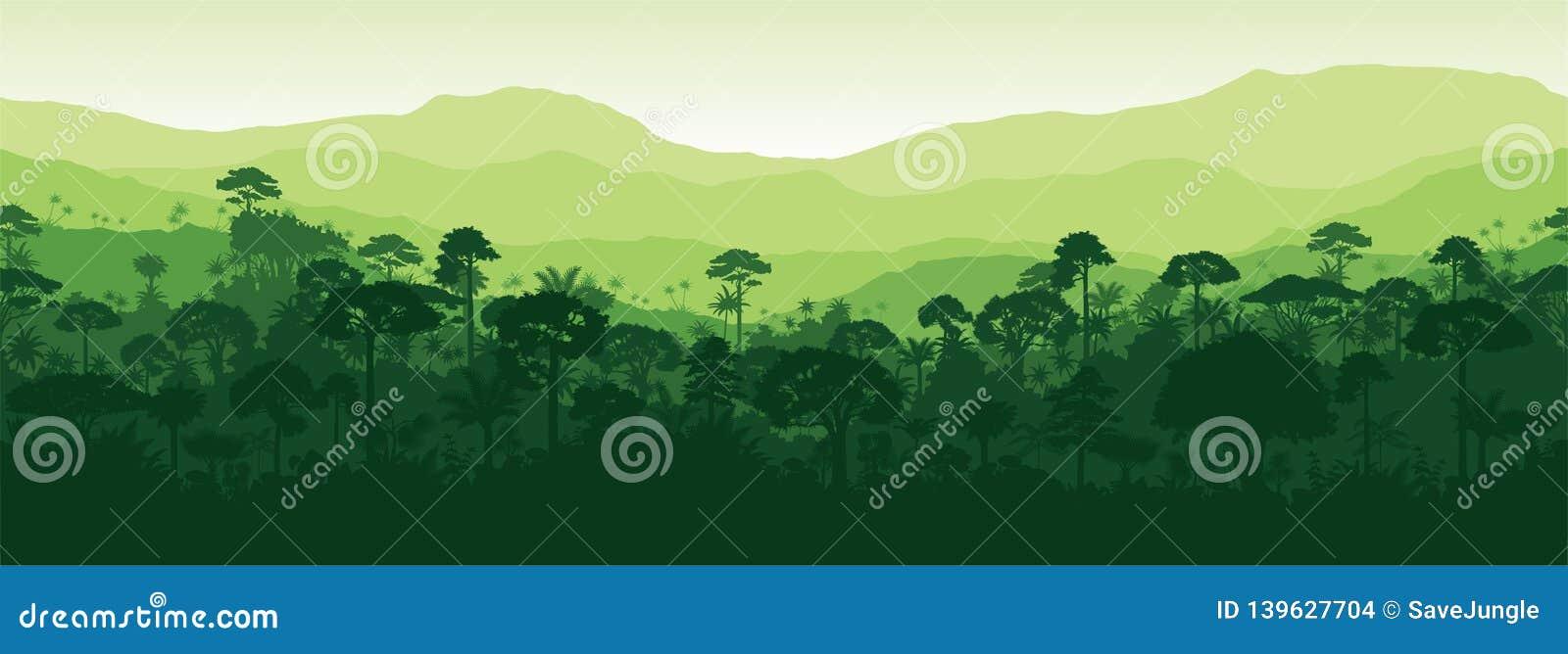 Fundo tropical sem emenda horizontal da floresta da selva da floresta úmida de Gayana do vetor