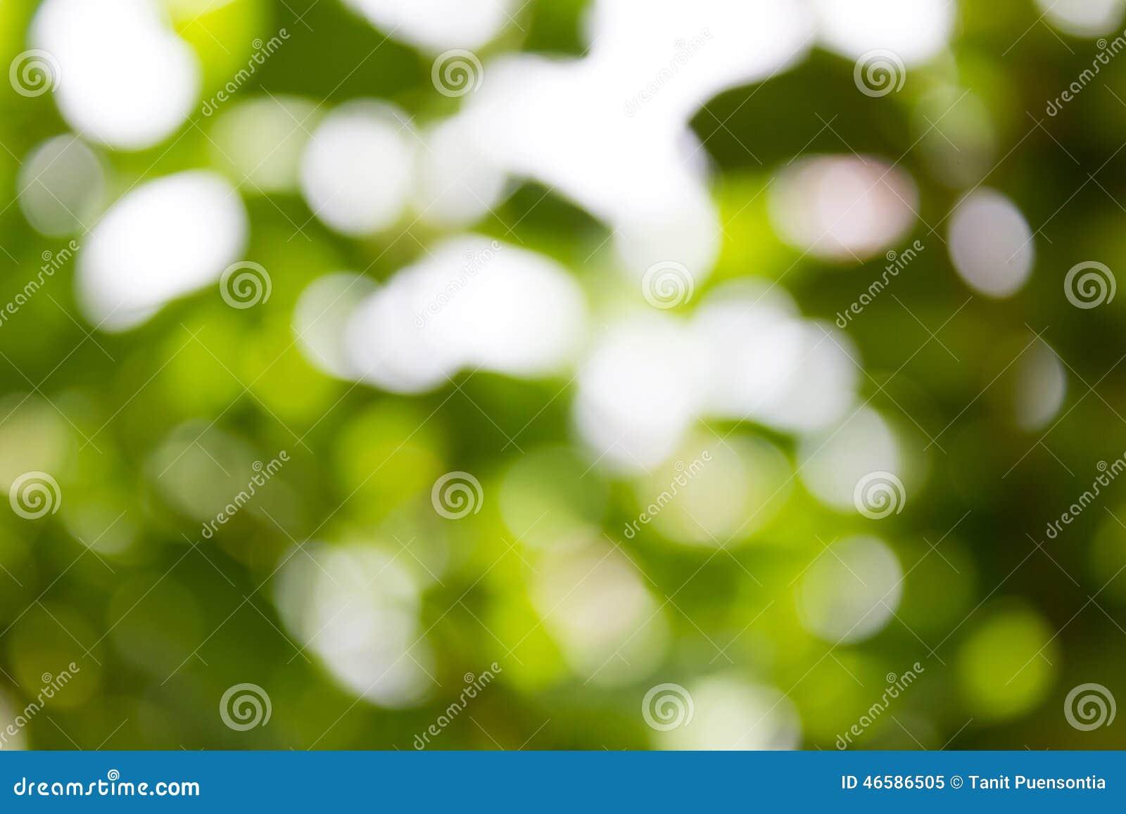 Fundo verde natural de Bokeh, fundos abstratos