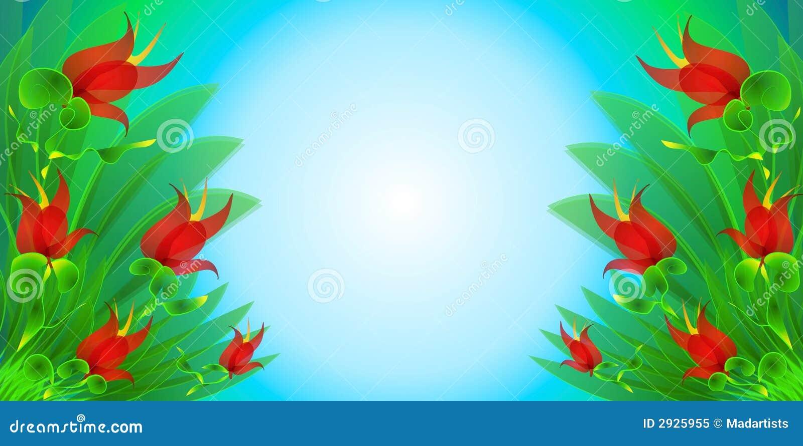flores coloridas jardim:jardim de flor com as flores vermelhas brilhantes, as folhas coloridas