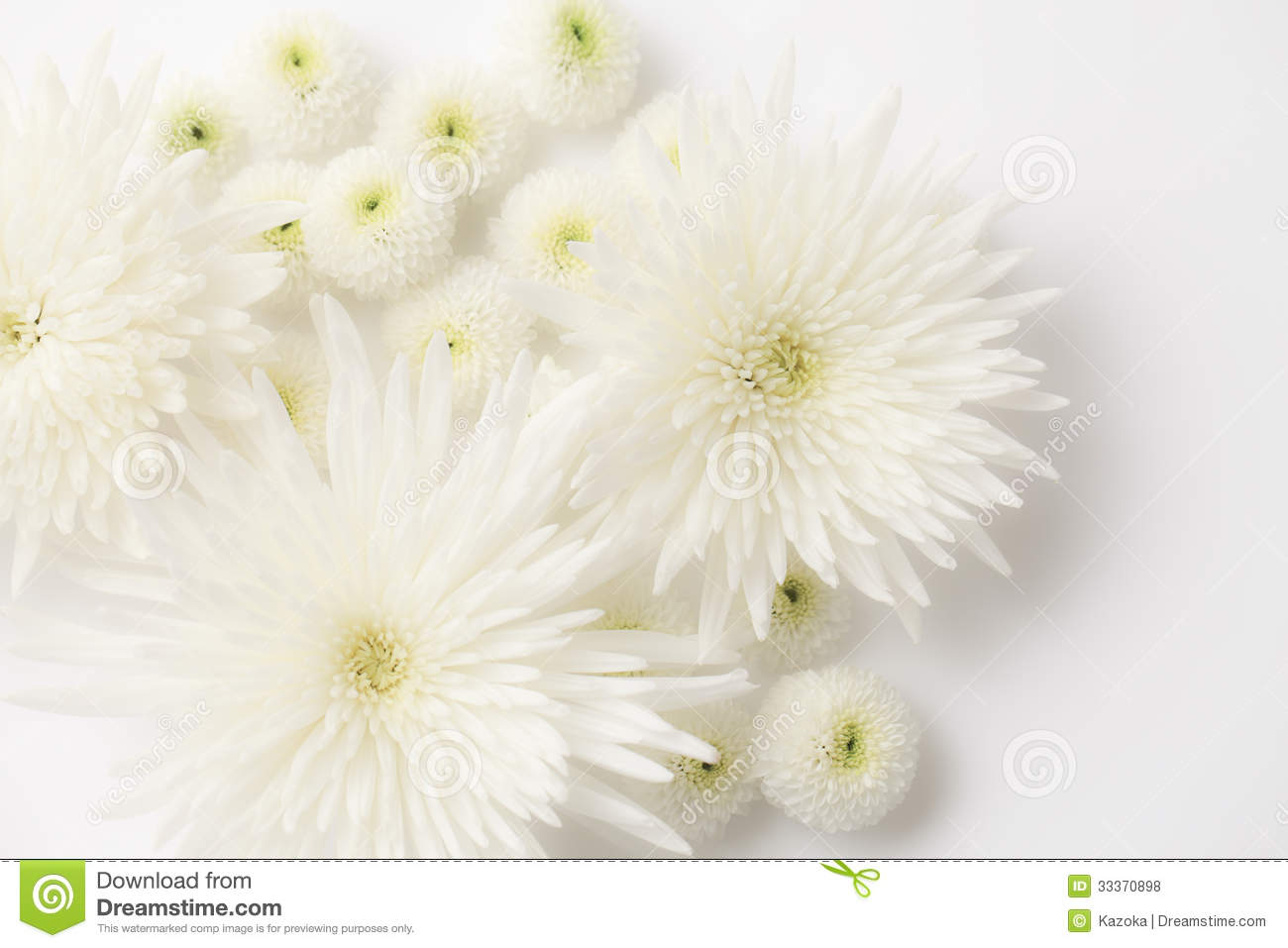 Funeral flowers stock photo. Image of decoration, flora ...