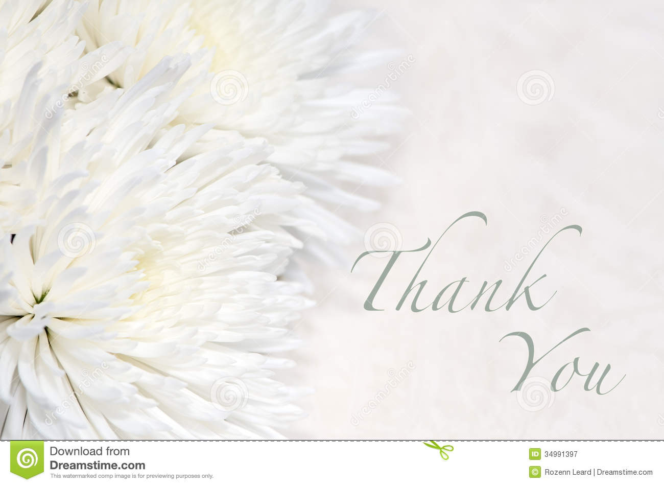 Funeral Thank You Card Royalty Free Stock Photography - Image ...