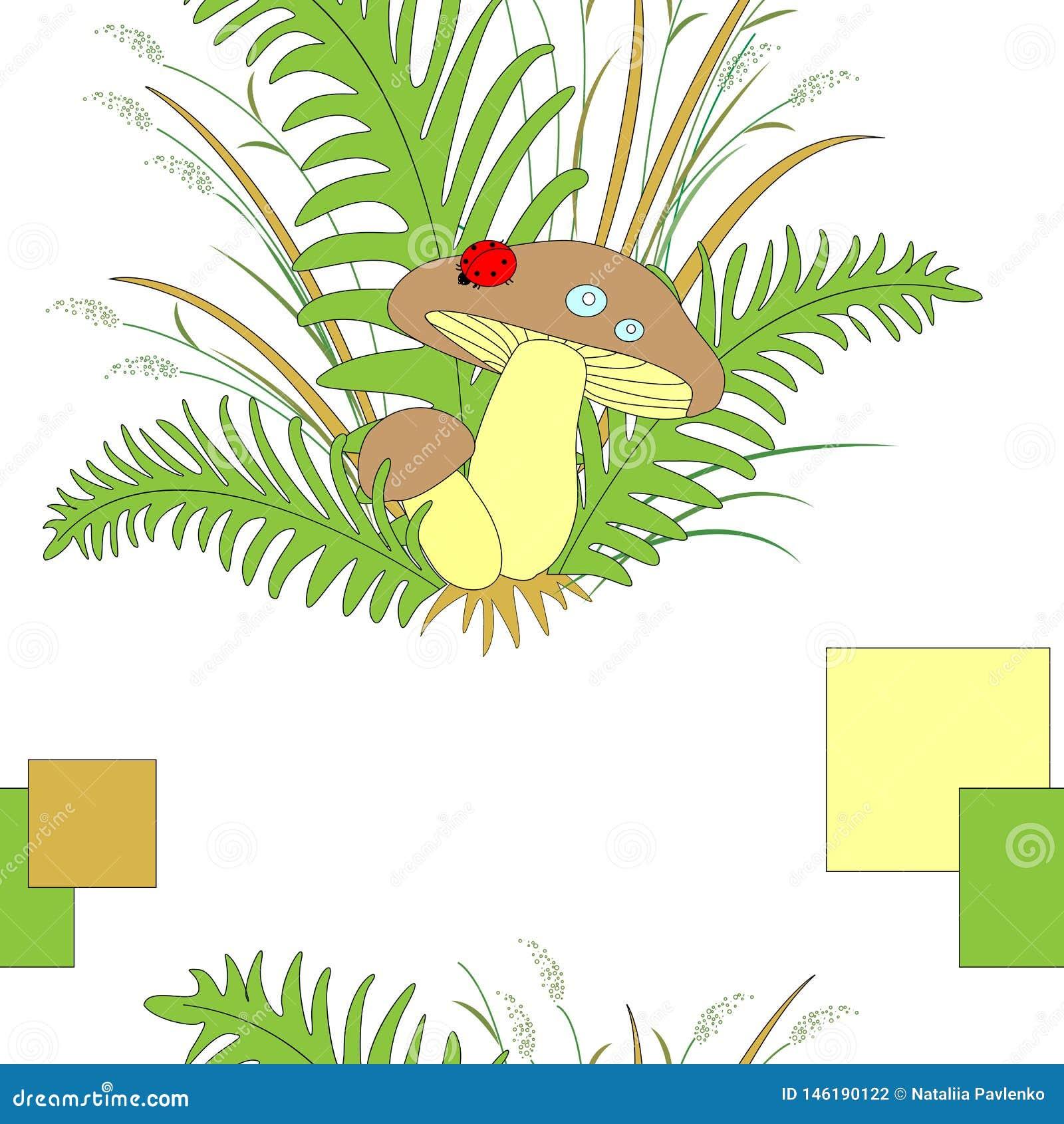Funghi piacevoli della foresta sveglia nell erba e nella coccinella della felce Illustrazione di vettore