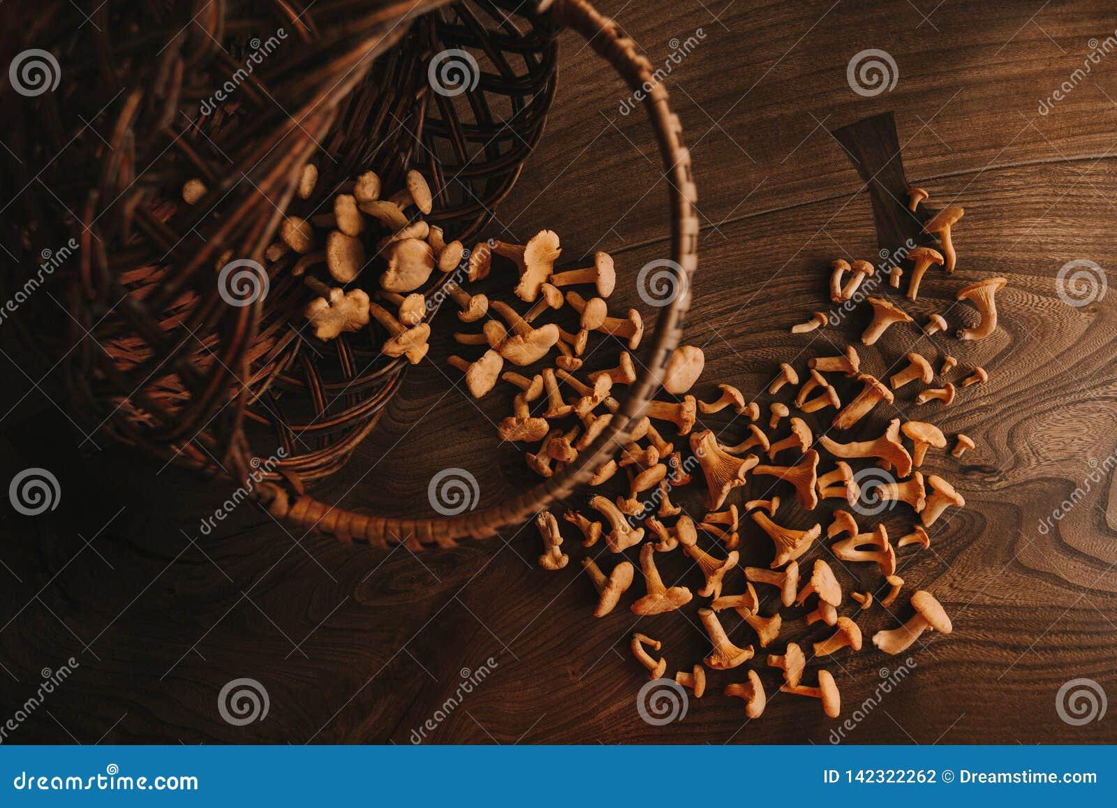 Funghi sulla tavola