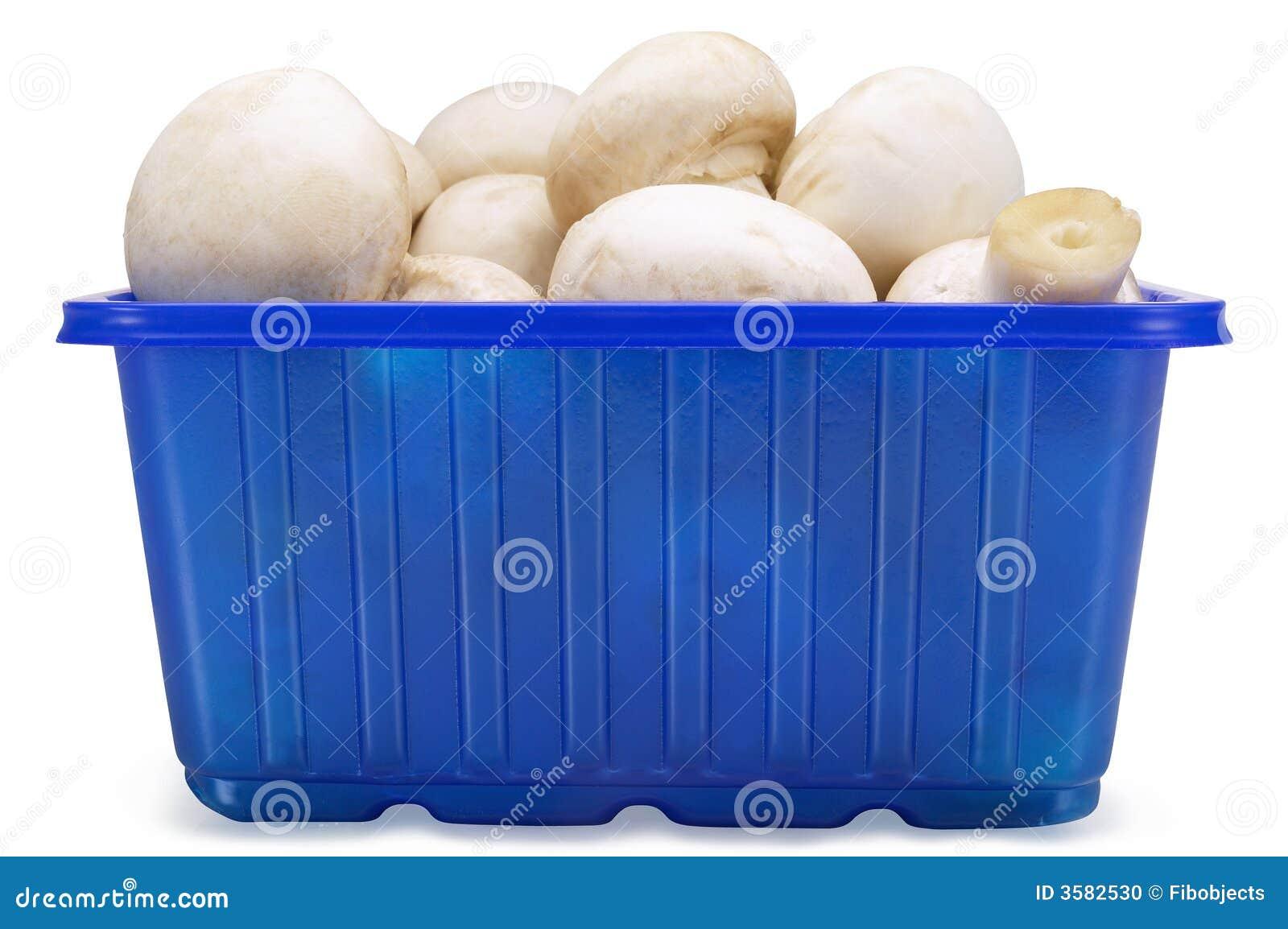 Funghi in una casella