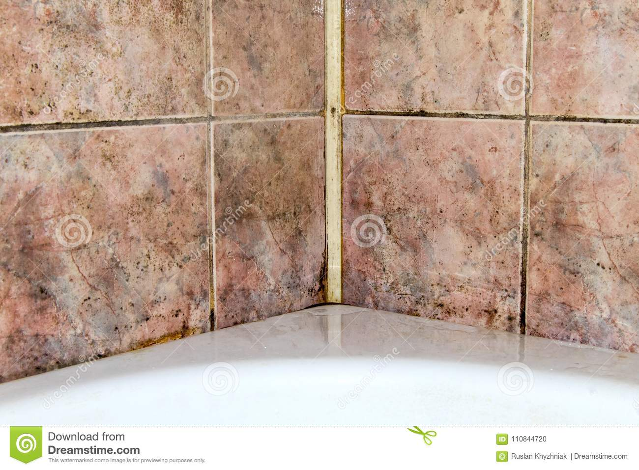 Fungus In The Bathroom Stock Photo Image Of Clean Ceiling 110844720