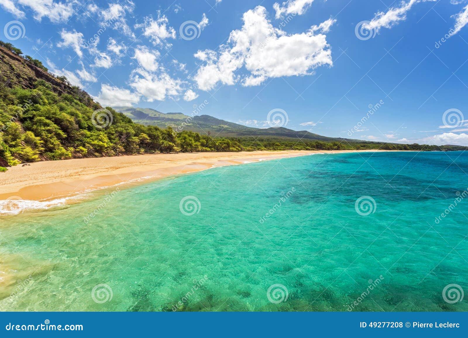 Funnit tropiskt paradis