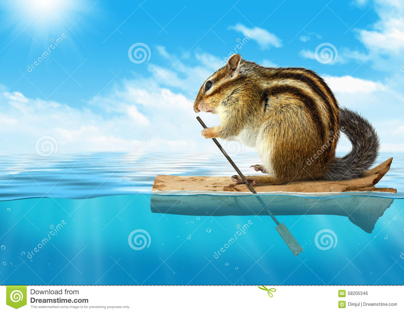 funny animal chipmunk floating at ocean travel concept with copy