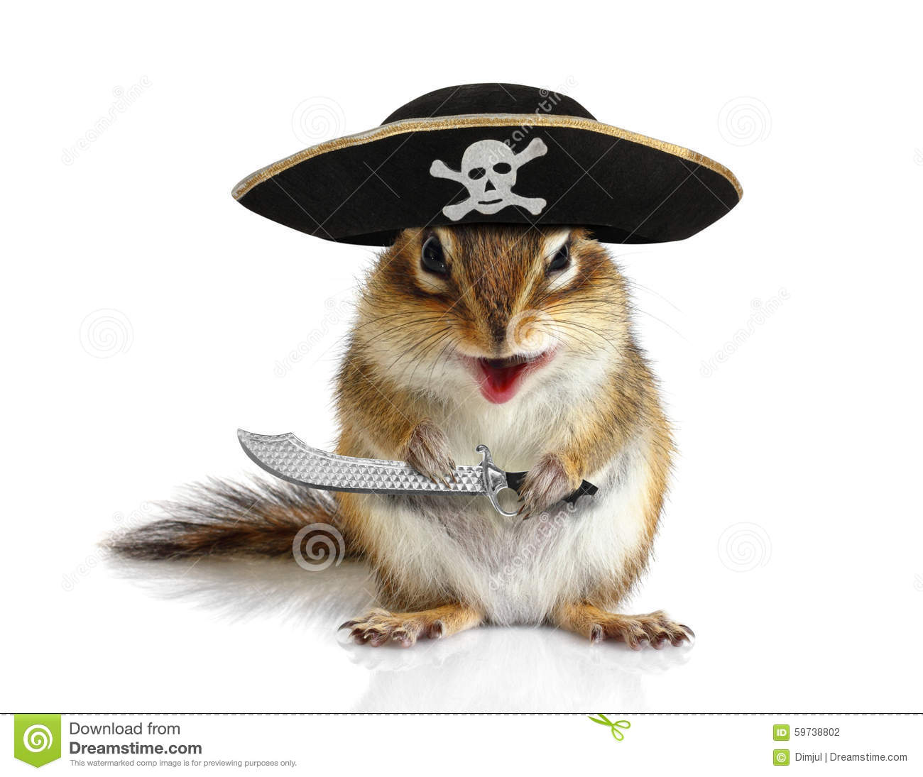 Funny Animal Pirate Squirrel With Hat And Sabre Stock