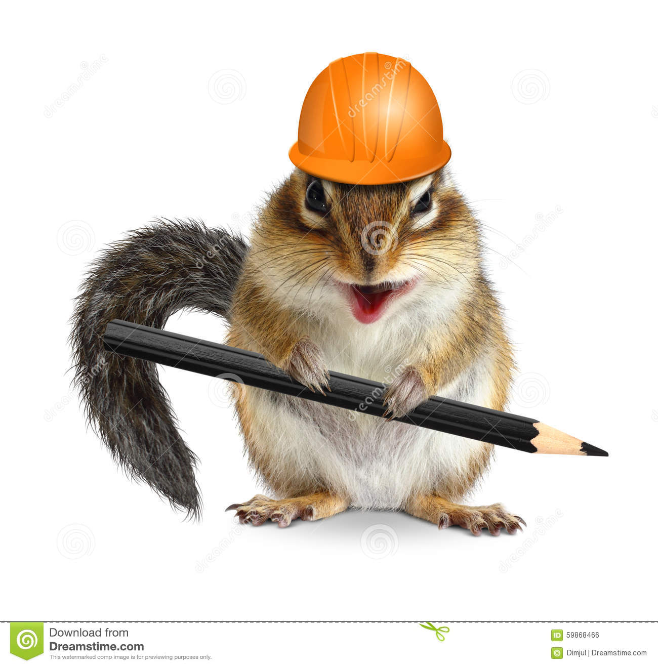 Funny Architect Chipmunk With Pencil And Hard Hat On White