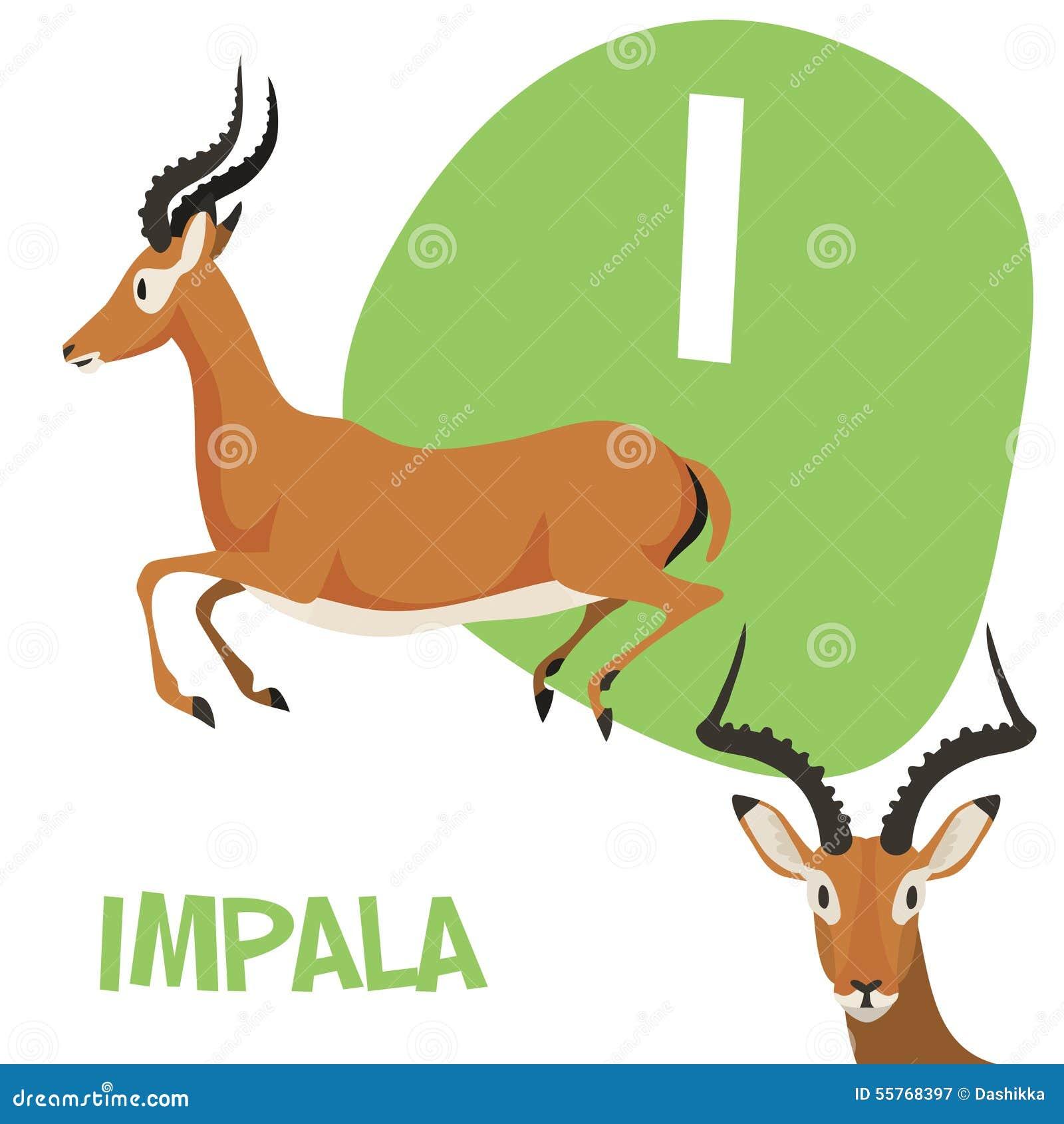 Funny Cartoon Animals Vector Alphabet Letter Set Stock ... - photo#43