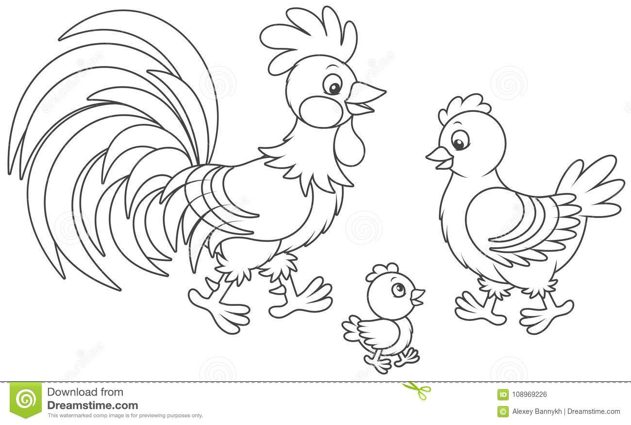 Download Rooster Hen And Chick Stock Vector Illustration Of Animal