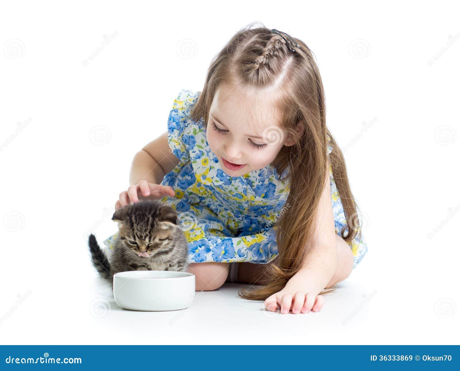 funny child feeding attractive kitten royalty free stock