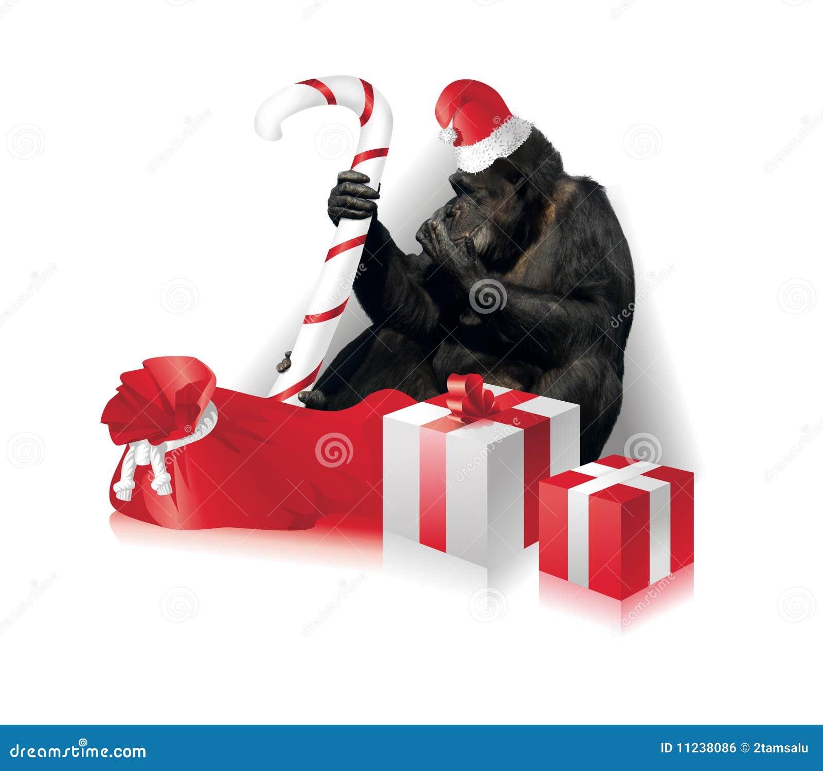 funny christmas card royalty free stock image image 11238086. Black Bedroom Furniture Sets. Home Design Ideas