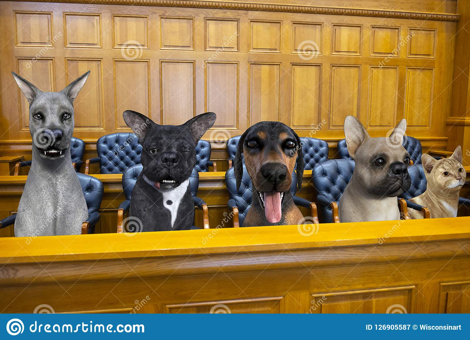Funny Dog Cat Jury Courtroom Trial