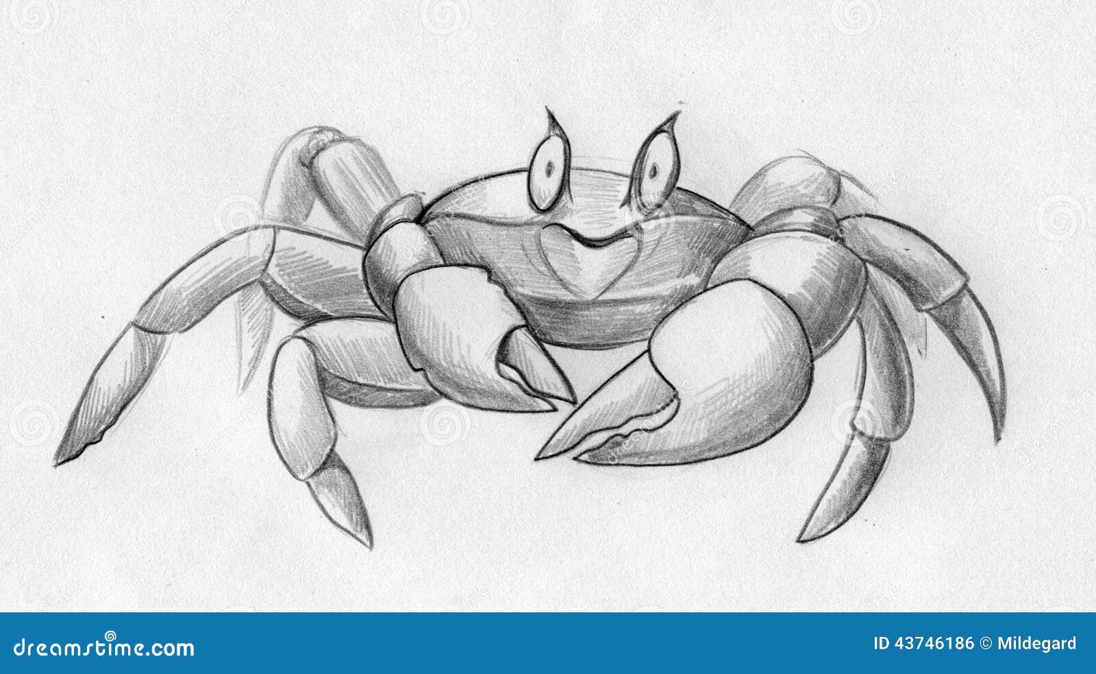 Funny crab sketch stock illustration illustration of beach 43746186