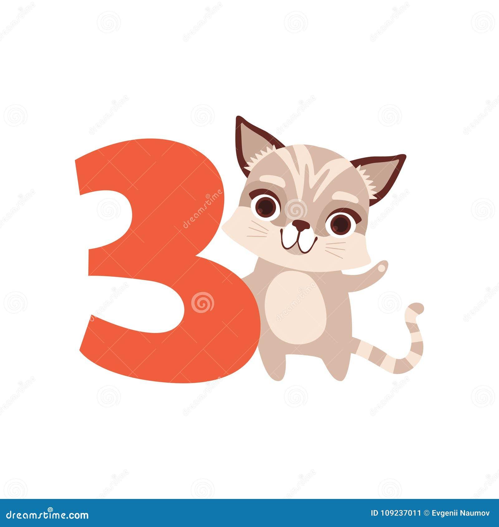 Funny Cute Raccoon Animal And Number Three  Birthday