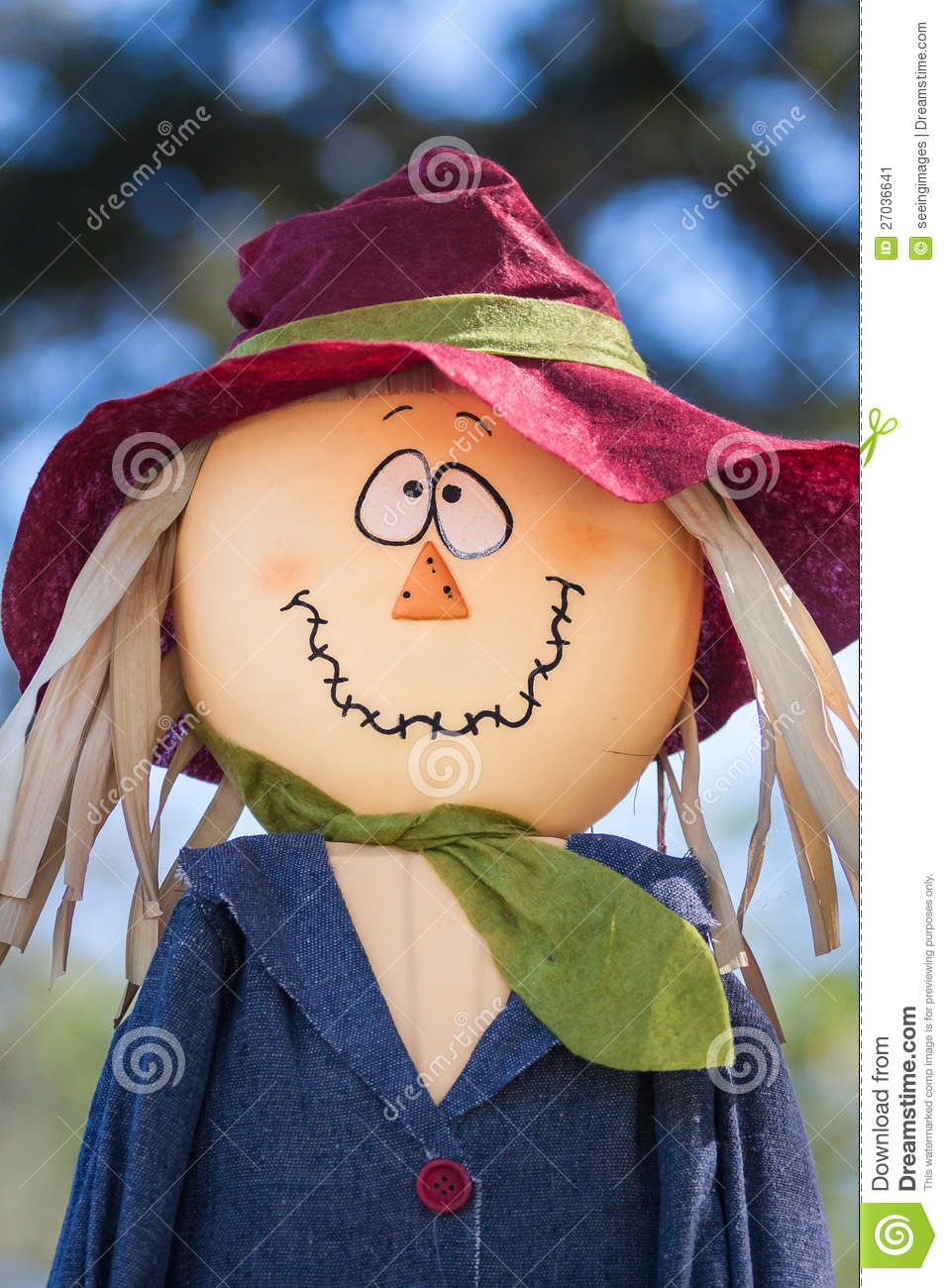 Funny Face Scarecrow Stock Image Image 27036641