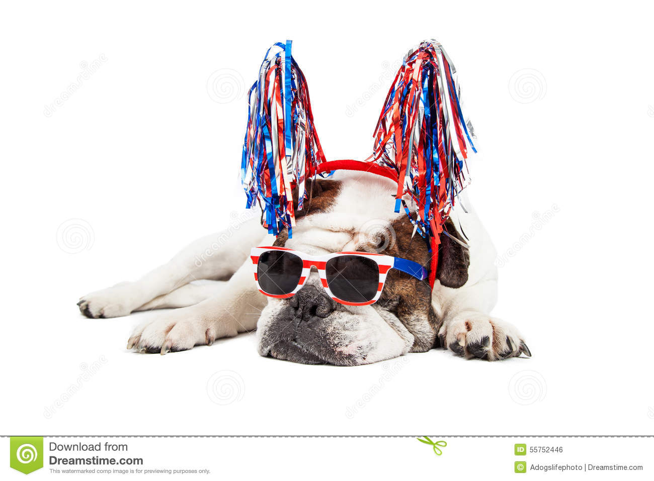 Funny dog happy 4th of july wish the best collection of quotes funny fourth of july dog stock photo image 55752446 kristyandbryce Gallery