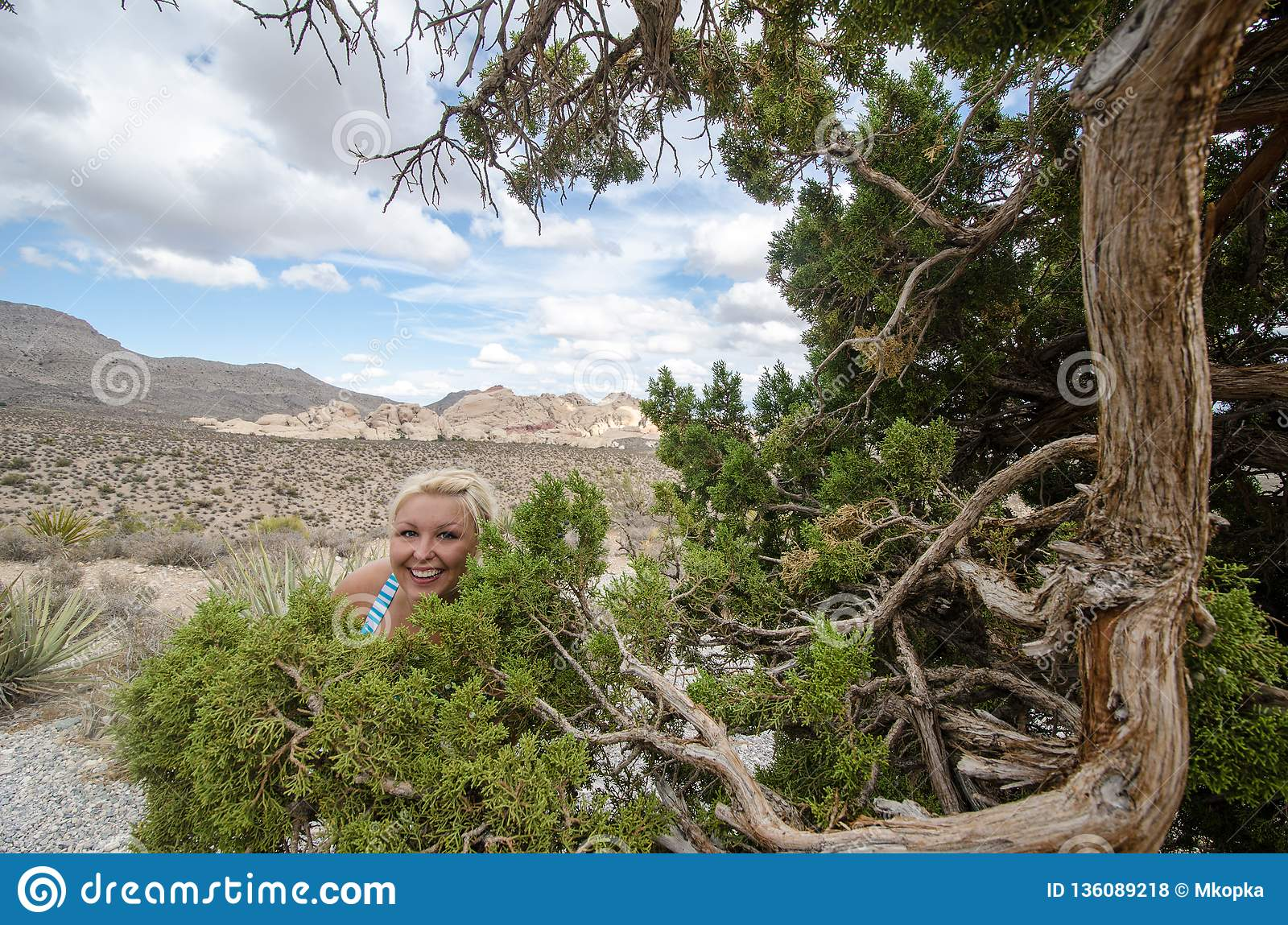 Funny, goofy blonde woman hides in the bushes near a juniper tree in Red Rock Canyon Conservation area in Nevada