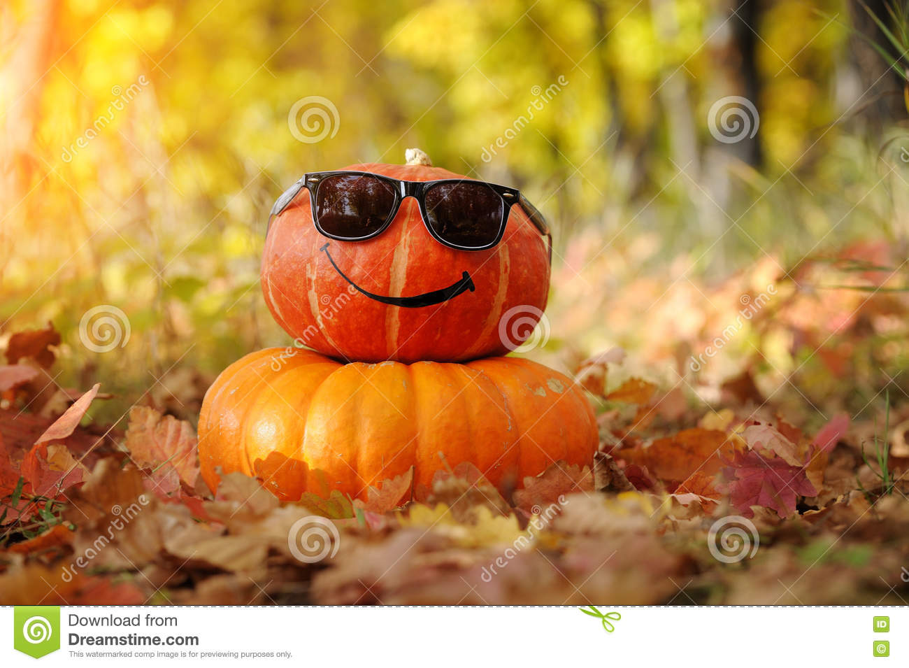 Funny Halloween. Pumpkin In Sunglasses In The Forest. Stock Photo ...