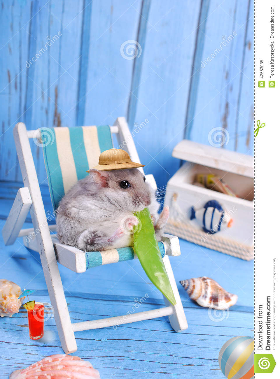 Stock Photo Man Laptop  puter Relaxing Beach Sitting Deck Chair Image42632590 additionally Above Ground Pool Deck Framing in addition Stock Photo Man Lying Beach Chair Ynder Umbrella Image13557460 further Black Exposed Ceiling Kitchen Industrial With Granite Countertops Open Floor Plan Wall Art besides Easy Bench Plans. on deck chair plans