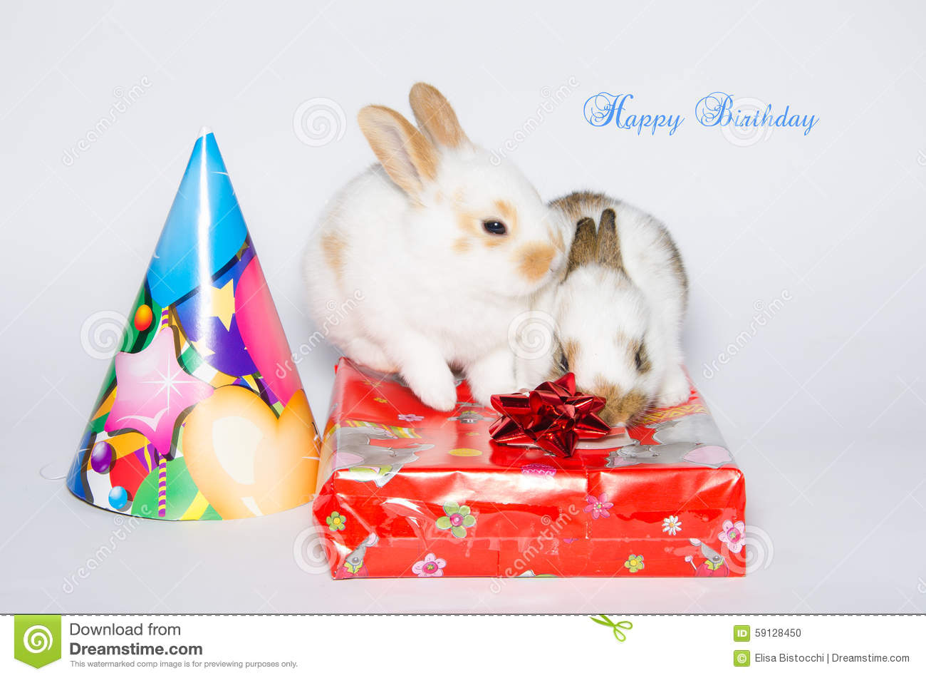 Funny Happy Birthday Card With Rabbits