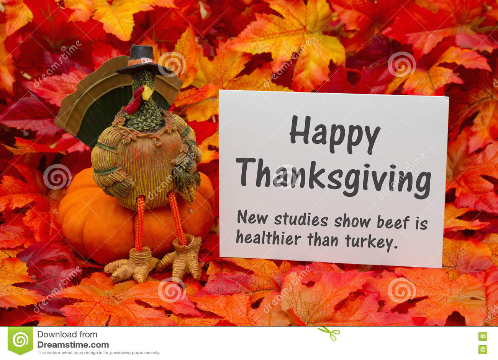 Thanksgiving Funny Cartoon Turkey Chief Cook Serving Pumpkin Pie