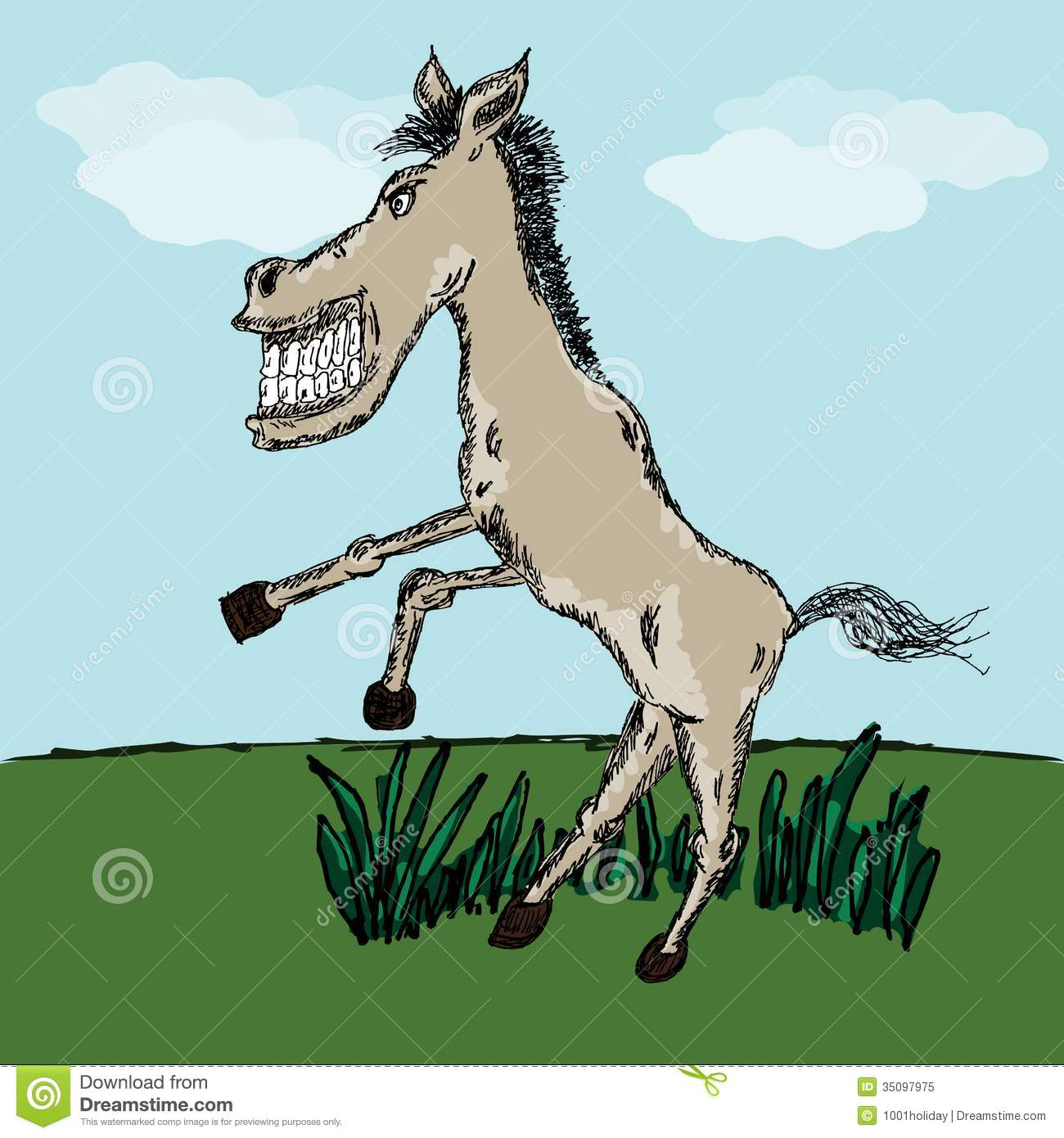 Funny Horse Sketch Stock Vector Illustration Of Country 35097975