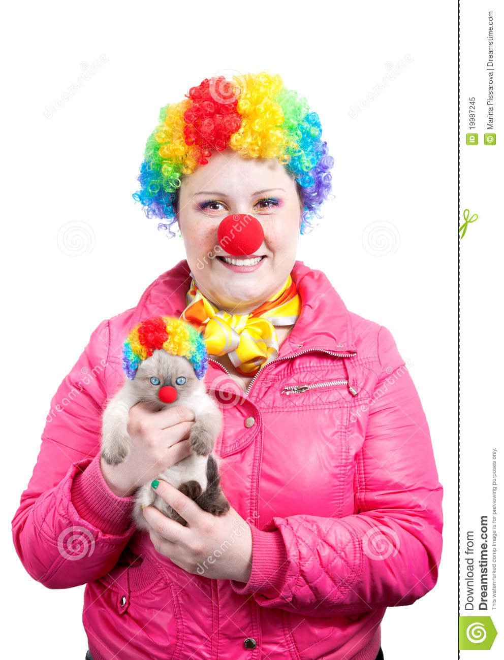 Funny Kitten And Clown Stock Image Image Of Looking