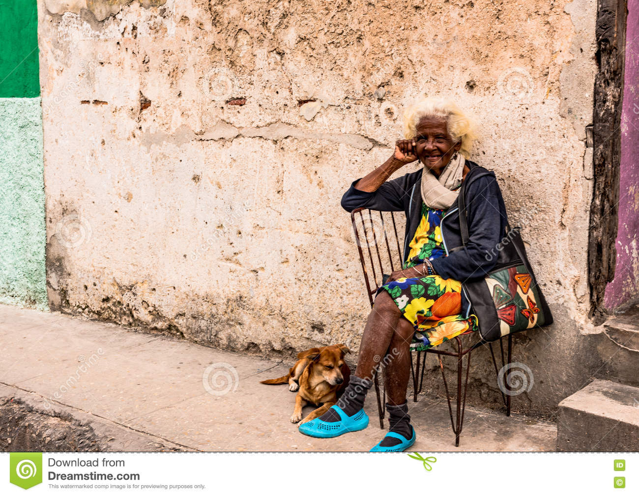 Funny Old Woman and Dog editorial image  Image of little