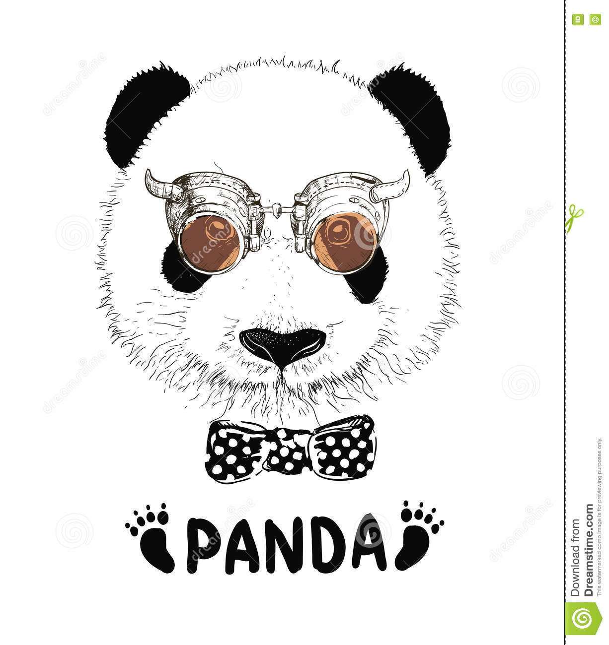 Funny Panda Face Pictures to Pin on Pinterest - PinsDaddy