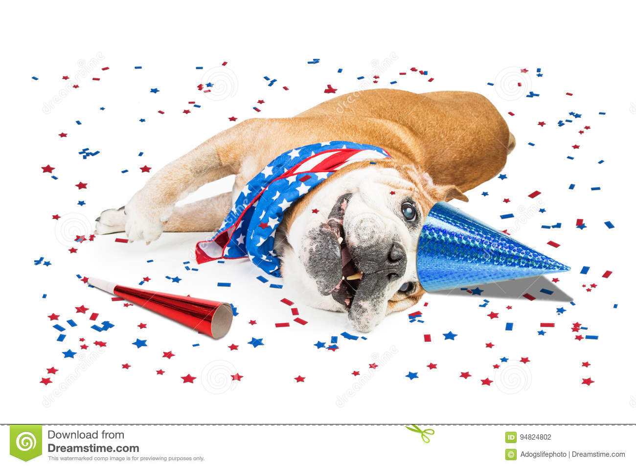 Funny Patriotic Party Dog stock photo  Image of maker - 94824802