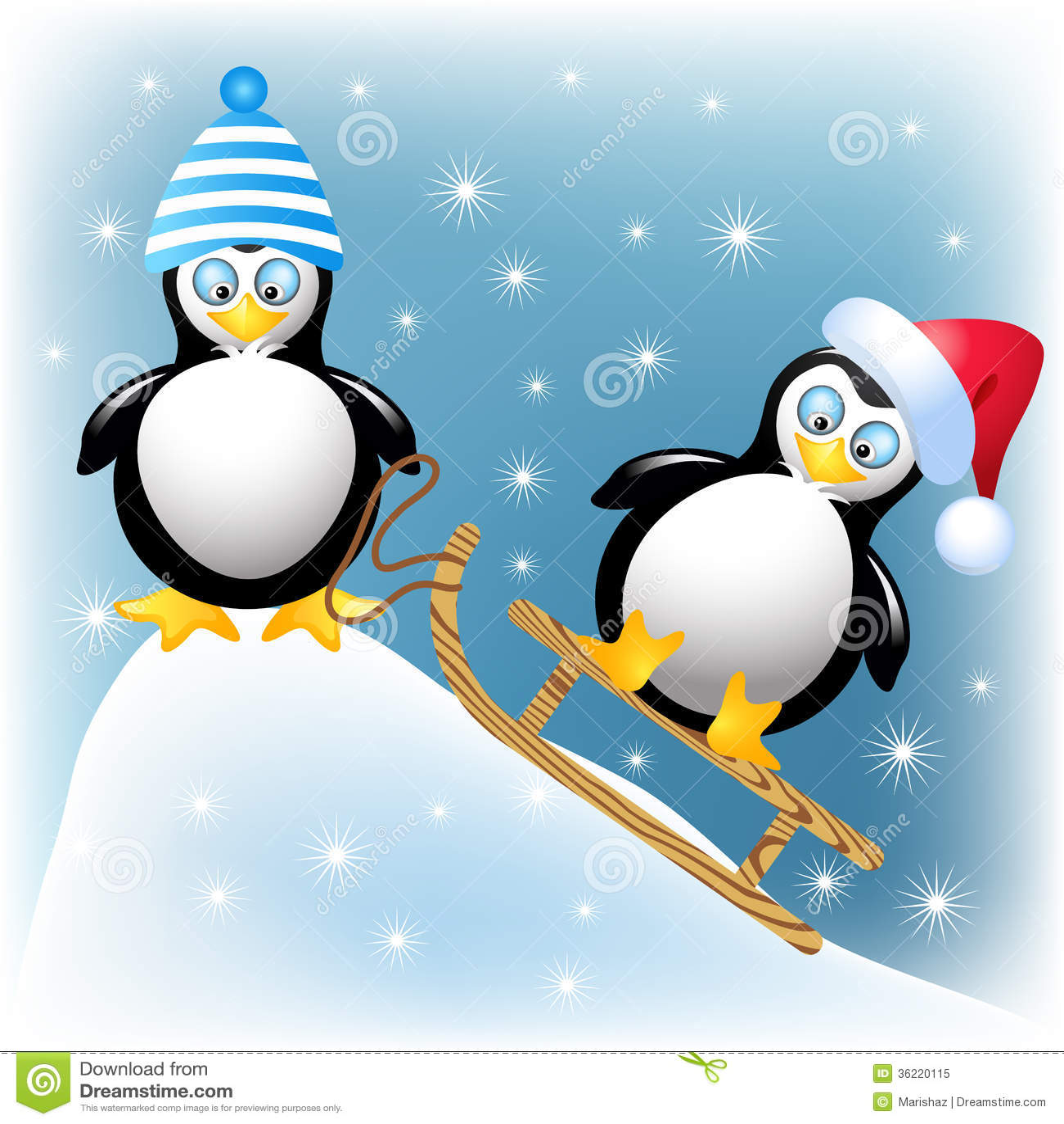 funny penguins royalty free stock photo image 36220115