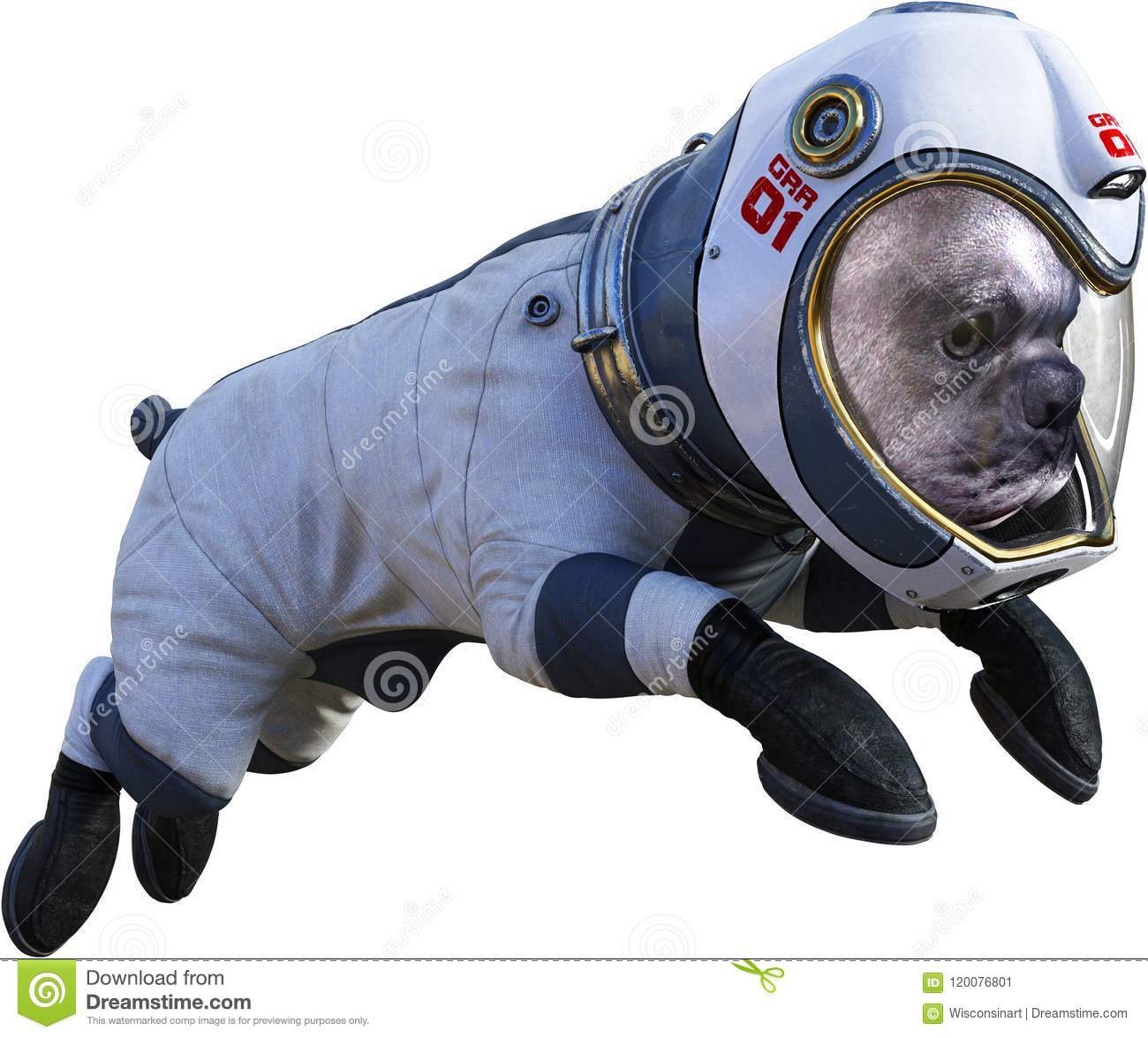 Funny Astronaut Dog, Space, Isolated, Spacesuit