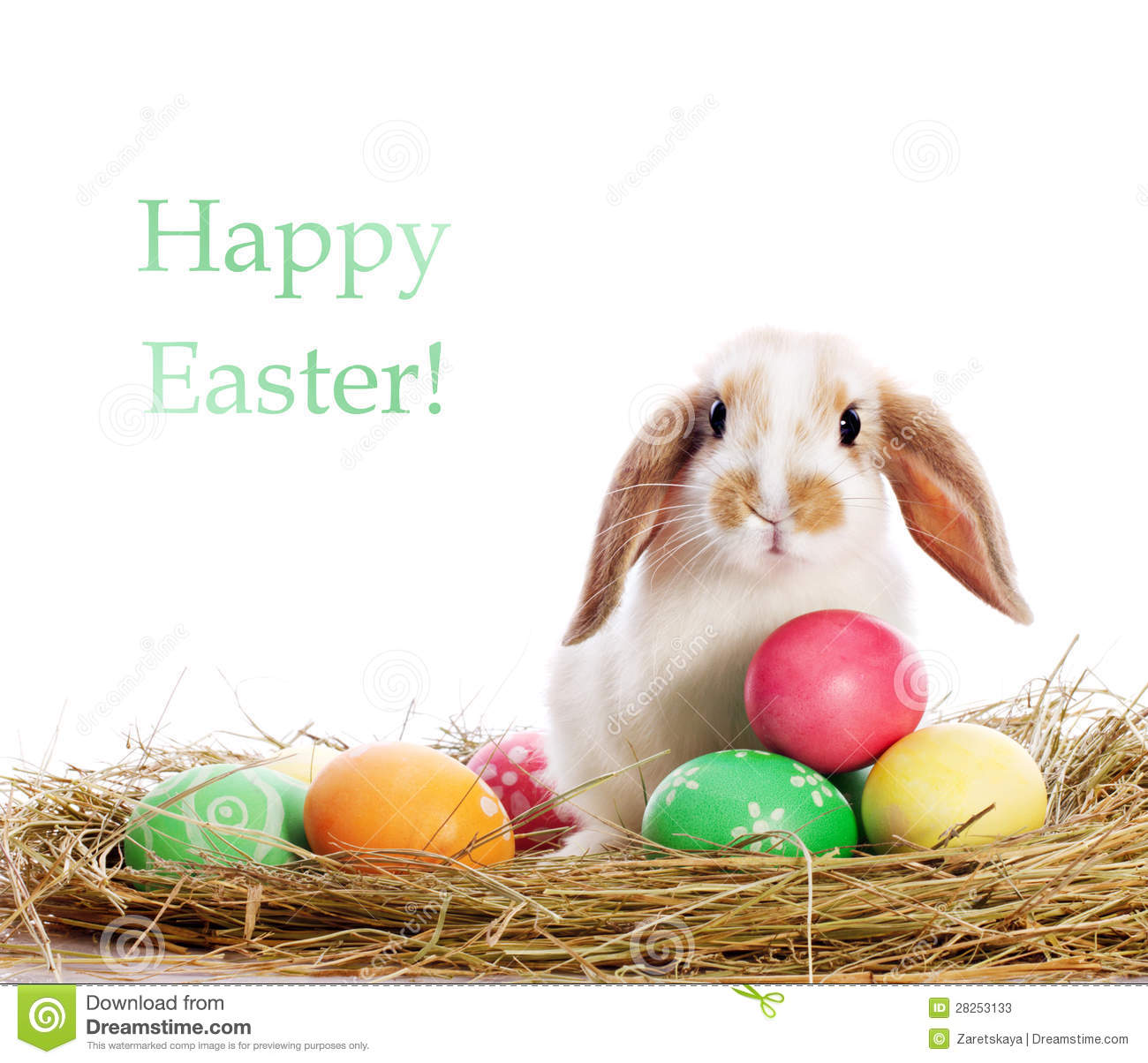 funny rabbit and easter eggs stock photos image 28253133