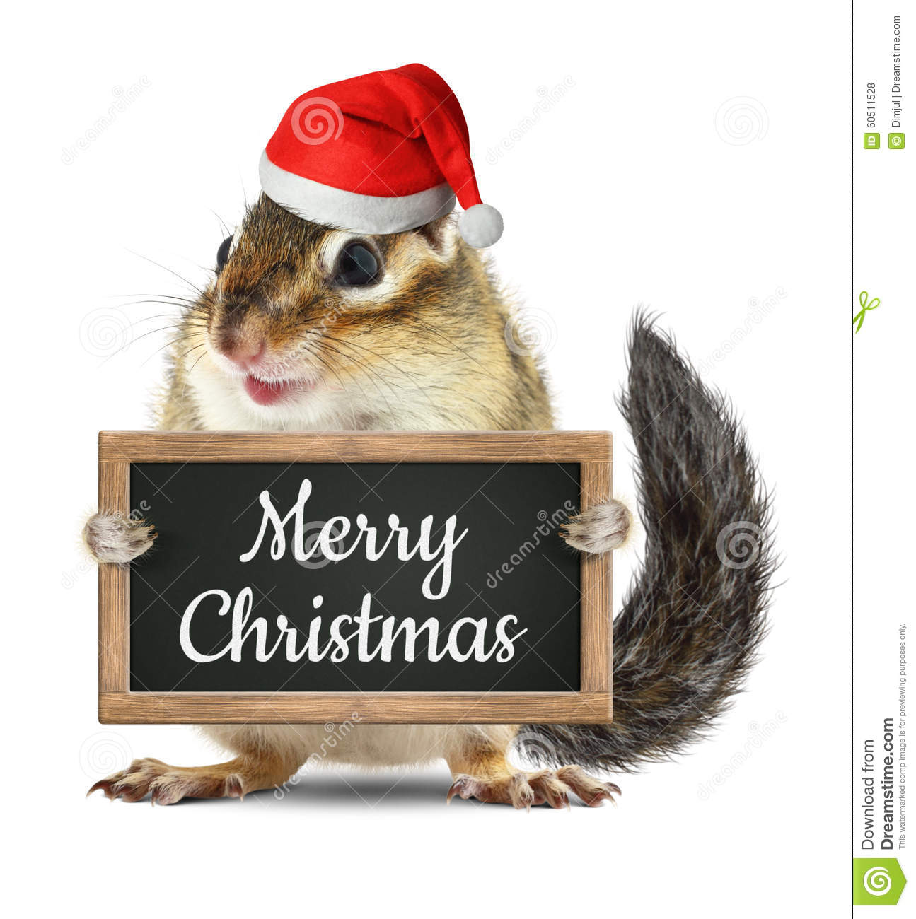 Funny Santa Claus, Chipmunk Hold Blackboard With Merry Christmas ...