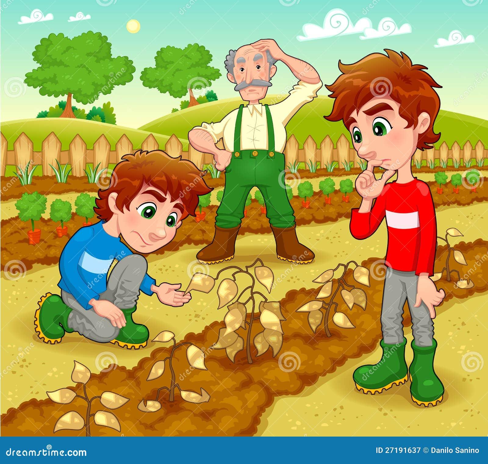 Funny scene in the vegetable garden  Funny Scene In The Vegetable Garden  Royalty Free Stock. The Vegetable Gardener