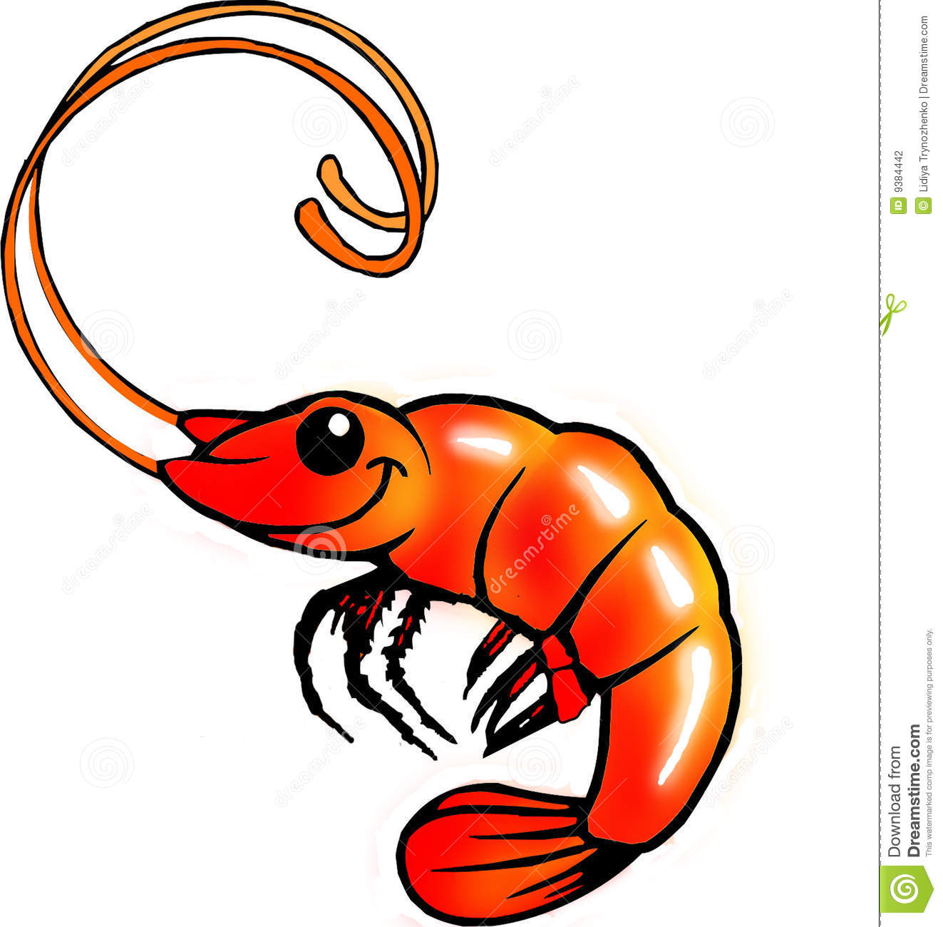 funny shrimp stock photography image 9384442 Cute Shrimp Clip Art Cartoon Shrimp
