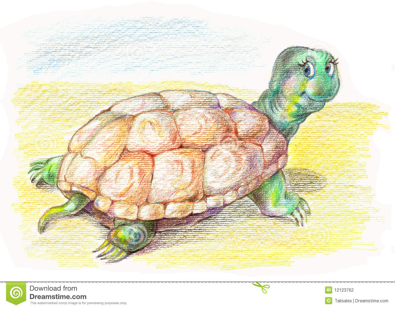 Funny Turtle Stock Photography - Image: 12123762