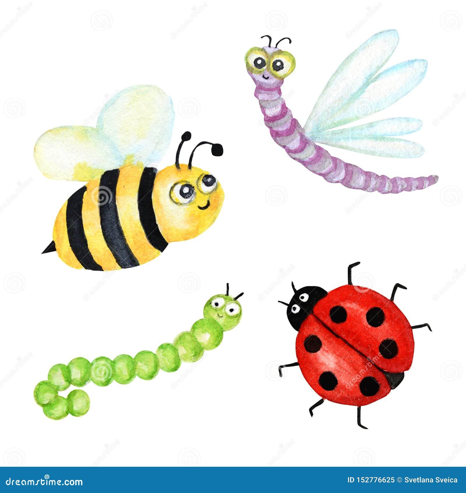594 Cartoon Bee Photos Free Royalty Free Stock Photos From Dreamstime