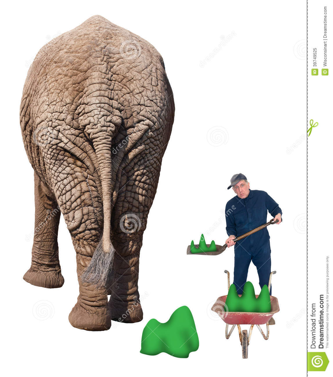 Funny Worker In Dead End Job Shovel Elephant Poop Stock