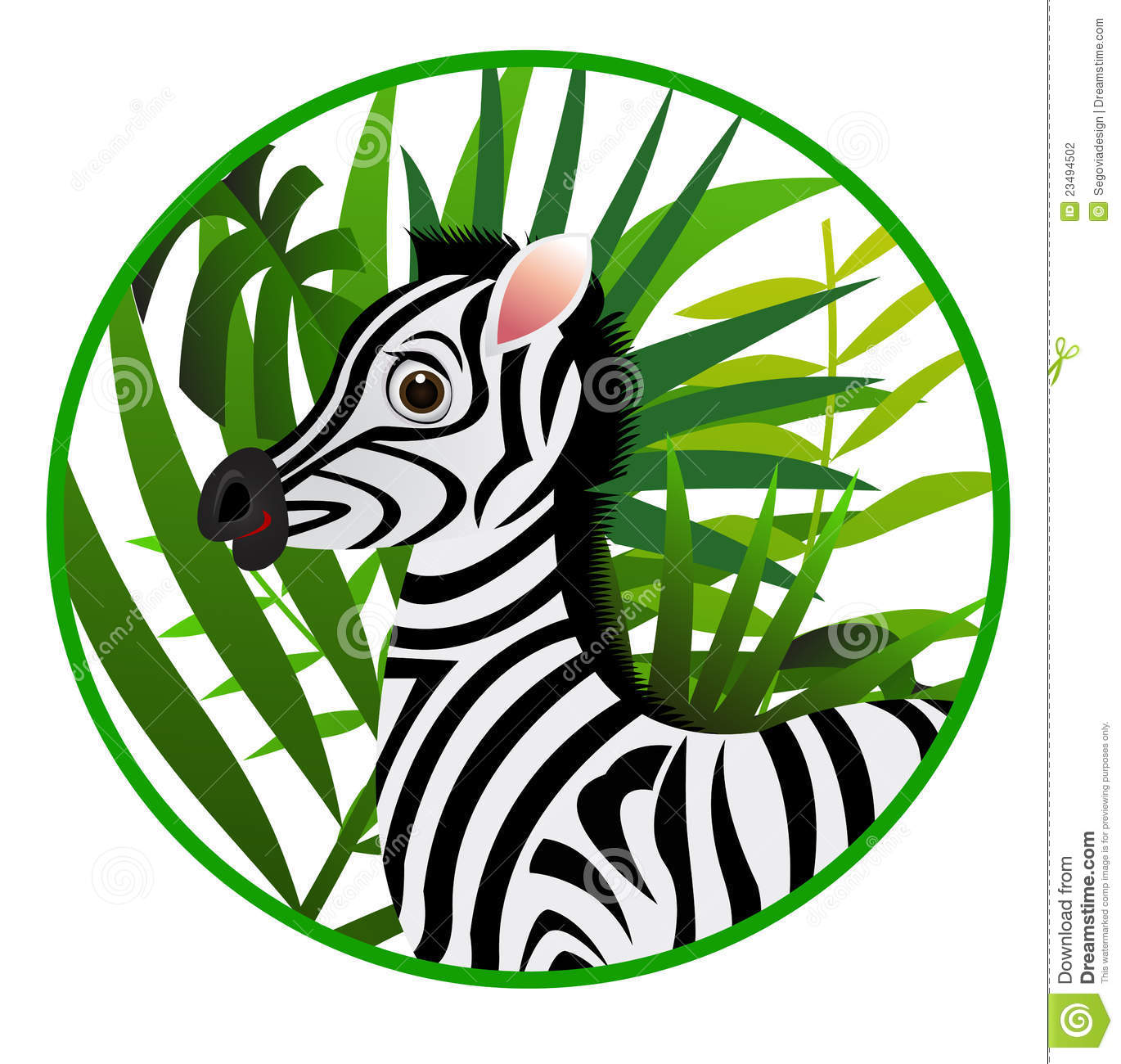 Funny zebra cartoon stock vector. Image of funny, isolated ...